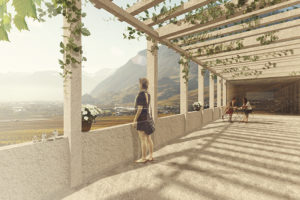 2015-Mijong Architects Valais-Competition-Cantonal Cellars-Leytron-Switzerland