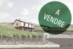 Mijong Architectes_Maison à vendre Ayent
