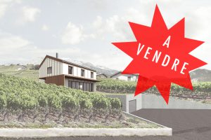 2016-Mijong Architects Valais-For sale-House-Ayent-Switzerland